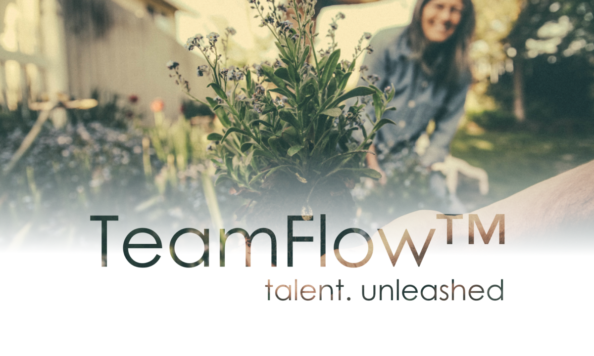 TeamFlow Coaching