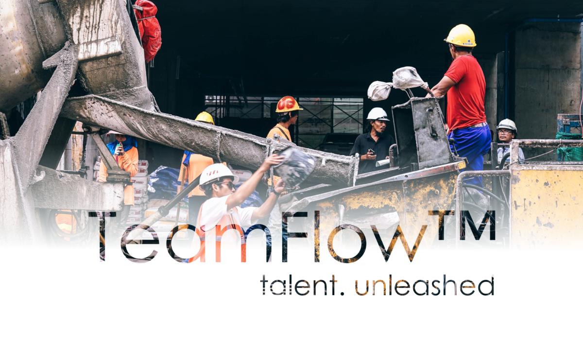 TeamFlow Coaching